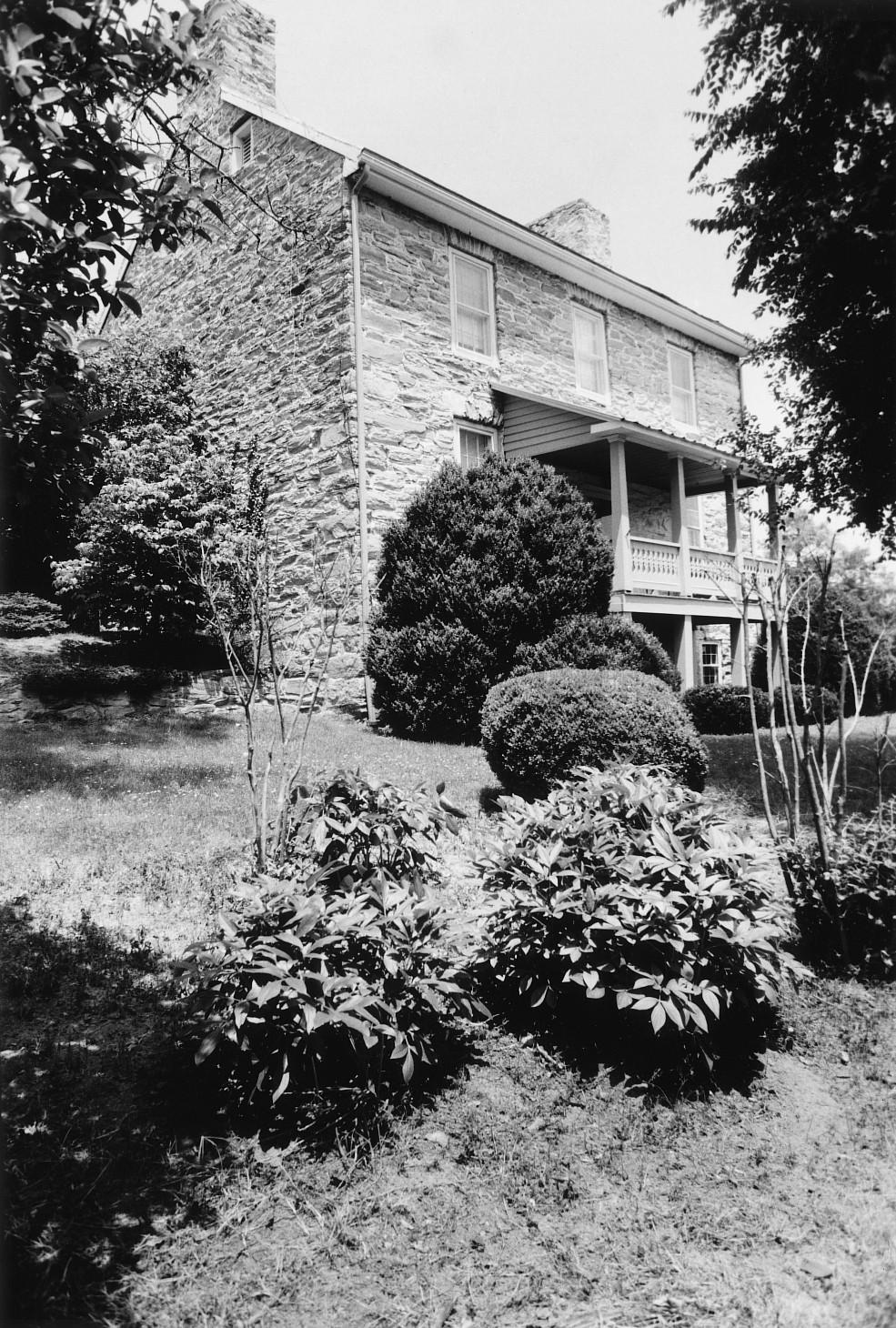 Vineyard Hill