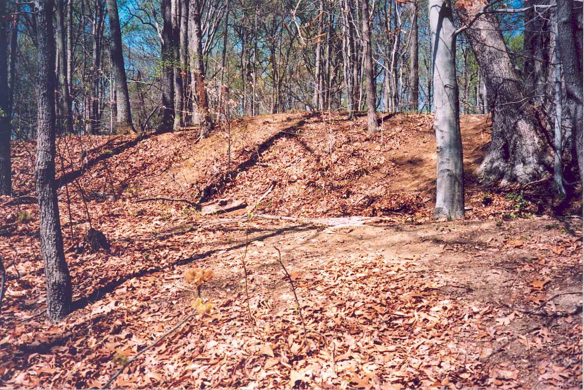 Lee's Mill Earthworks