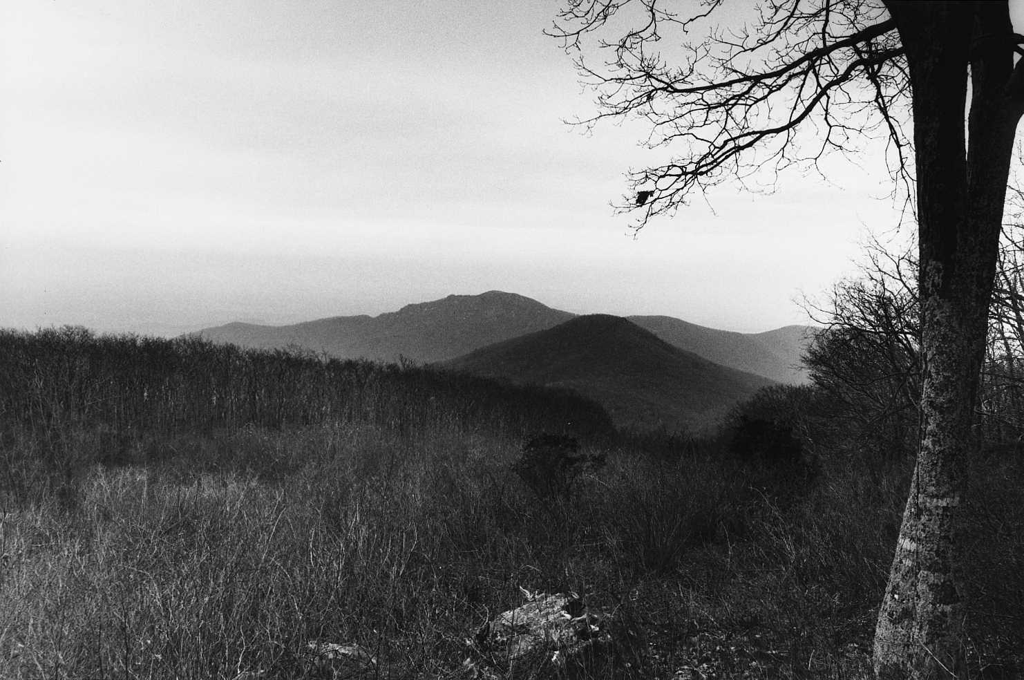 Robertson Mountain Site
