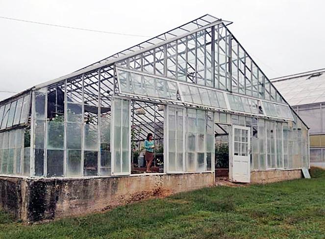 Doyle Florist Inc. / H. R. Schenkel Inc. Greenhouse Range