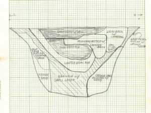 A pencil drawing of an archaeological profile with many layers.