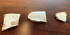 The white backsides of the same sherds pictured above.