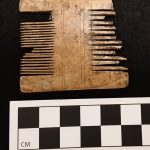 Grooming comb recovered in the City of Suffolk.