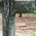 PALM FROND: Resurrection.