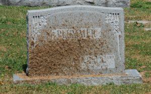 Grass debris on a gravestone.