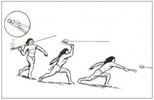 Illustration of a person using an atlatl to throw a spear.
