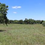 View of Cedar Run Tract